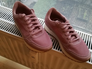 Anna Field rose sneakers