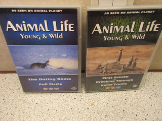 Dvd Film Animal life