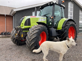 CLAAS ARION 640 CEBIS AFF. FORAKSEL, FRONTLIFT, FRONT PTO