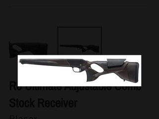 Blaser r8 ultimate lether ajust guld aft