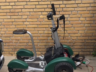 Move easy golf buggy